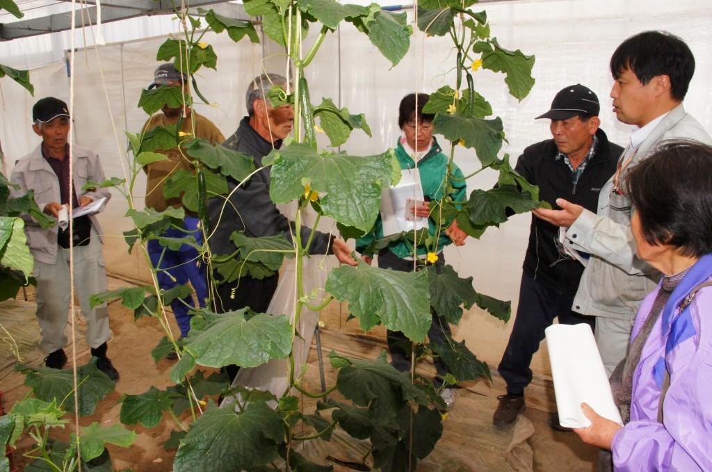 栽培技術を共有する部会員