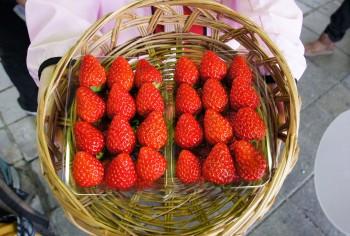車内で配った良質なイチゴ