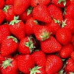 strawberry1[1]