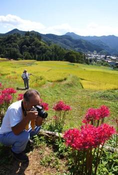 彼岸花の撮影を楽しむカメラマン