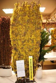 県花き園芸組合連合会長賞 千島さんの「マンサク」