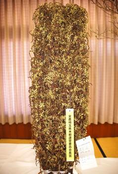 全農さいたま運営委員会長賞 坂本さんの「キブシ」