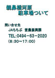 thumbnail of 親鼻河原
