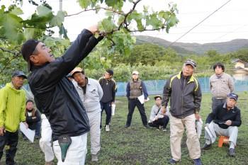 栽培技術や知識の共有をする生産者らHP