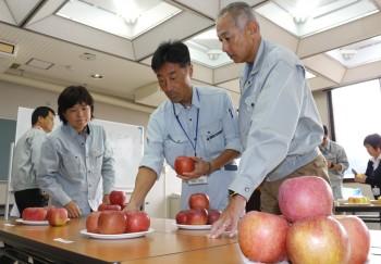 秩父産リンゴの審査