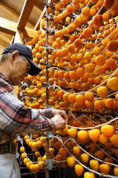 良質なあんぽ柿の生産