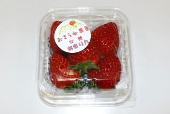 根元まで赤い完熟イチゴ
